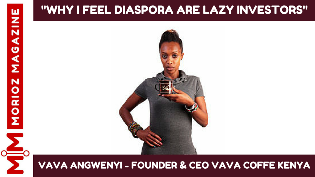 VIDEO:WHY I FEEL THE KENYA DIASPORA ARE LAZY INVESTORS